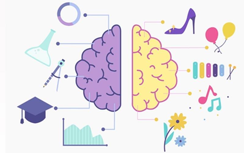 کمک به سلامت مغز با یادگیری زبان