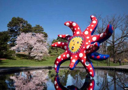 Japanese Cosmic Show Meets American Garden