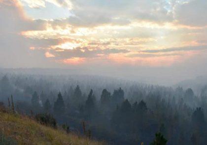 Study Shows Wildfire Smoke Can Make Clouds Drop Less Rain